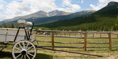 Long's Peak with carriage and meadow.